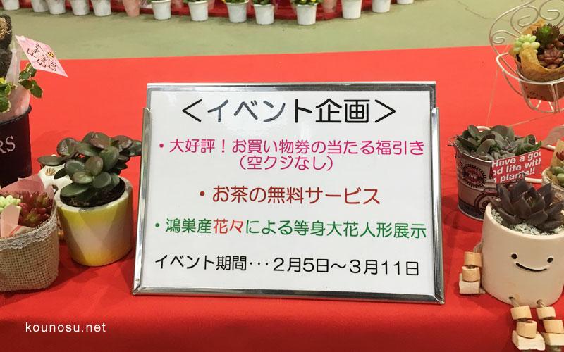 鴻巣びっくりひな祭りパンジーハウスお茶サービス