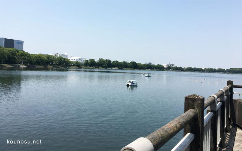 久喜菖蒲公園噴水エリア